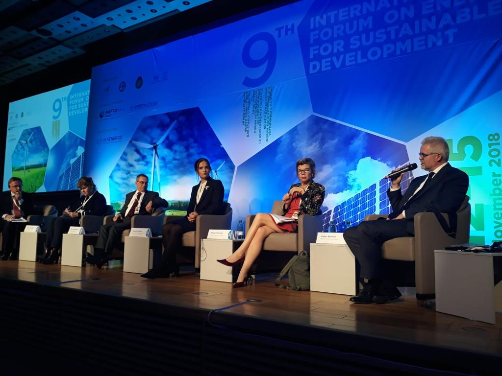 Energy Charter Treaty addressed at the 9th International